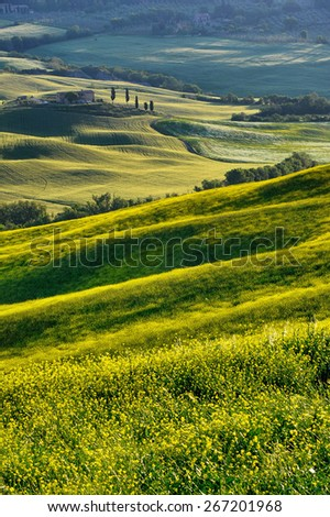 Landscape in Tuscany - stock photo
