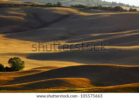 Landscape in Tuscany at sunset in summer