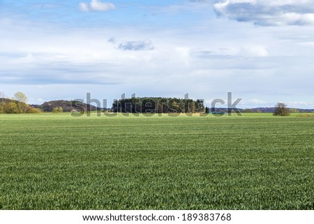 landscape in Usedom with blue sky