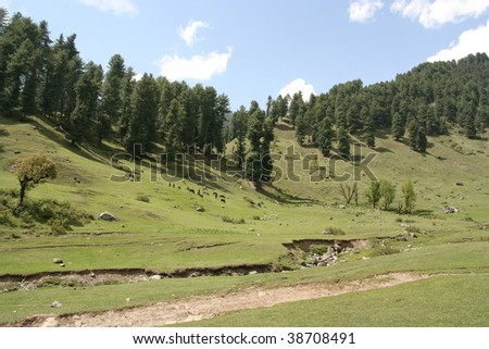 landscape Kashmir, Himalaya India - stock photo