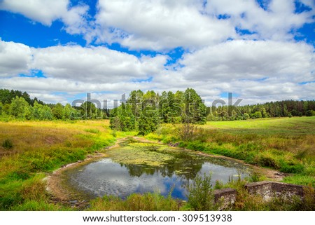 landscape, lake and trees on the background of blue sky with clouds