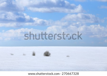 landscape marvelous white clouds in the blue sky above snow-covered field in early spring