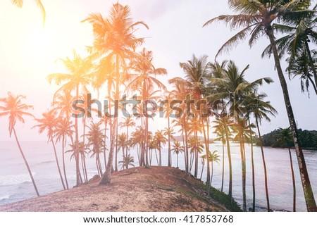 landscape. Mirissa Beach. Sri Lanka. Instagram effect (vintage). - stock photo
