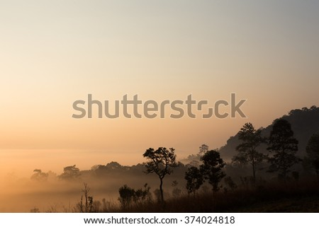Landscape mountain and forest in the morning with mist. - stock photo