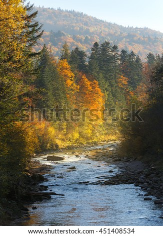 Landscape mountain river in autumn forest at sunlight. Nature background. - stock photo