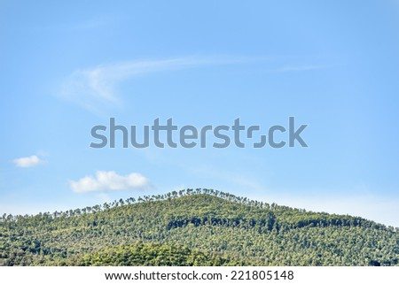 Landscape near Montemassi in Tuscany, Italy in autumn on a sunny day - stock photo