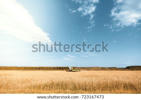 Landscape of a golden wheat field and machinery working
