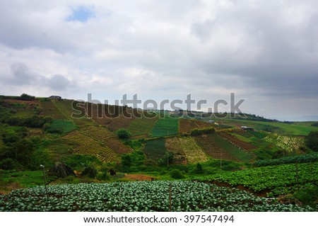 Landscape of agriculture farm at highlands in tropical country. - stock photo