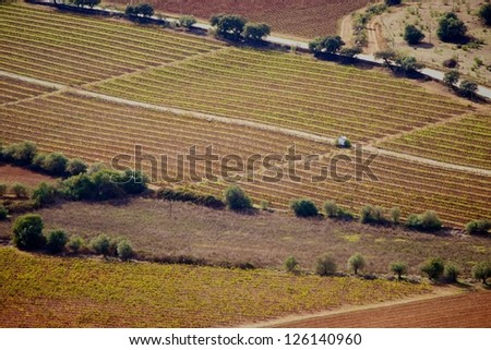 Landscape of agriculture fields of crops, olive oils in Alentejo region, Evora, Portugal - stock photo