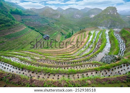 Landscape of China (rice terraces and karst mountains) - stock photo