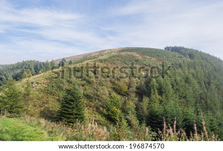 Landscape of Cwmcarn Forest, Wales  - stock photo