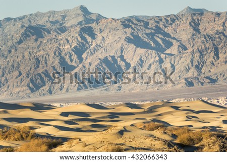 Landscape of Death Valley National Park. In this landscape, there are sand dunes, mountains, and trees.