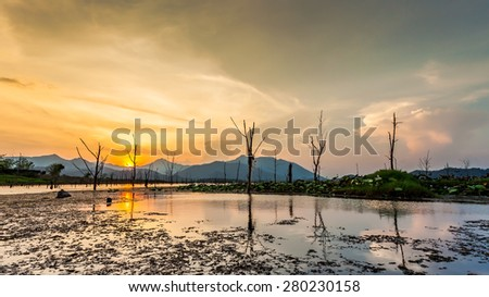 Landscape of dry tree with lake and mountain in sunset