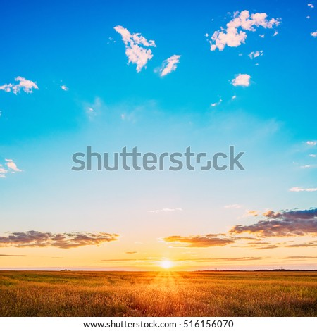 Landscape Of Field Under Scenic Summer Dramatic Sky In Sunset Dawn Sunrise. Skyline.