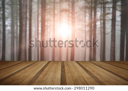 Landscape of forest with dense fog in Autumn Fall with sun bursting through trees with wooden planks floor - stock photo