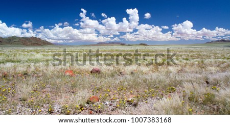 Landscape of grasslands and clouds in Namibia