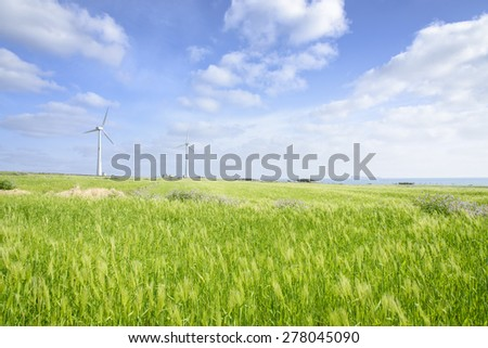 Landscape of green barley field and wind generator with blue cloudy sky in Gapado Island of Jeju Island in Korea.
