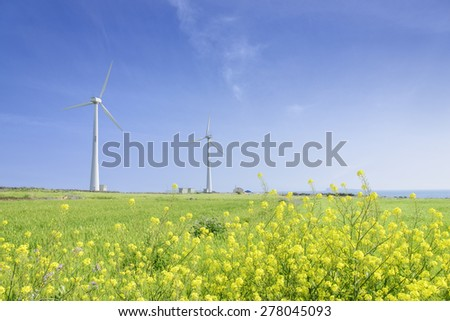 Landscape of green barley field and yellow canola flowers with wind generator in Gapado Island of Jeju Island, Korea.