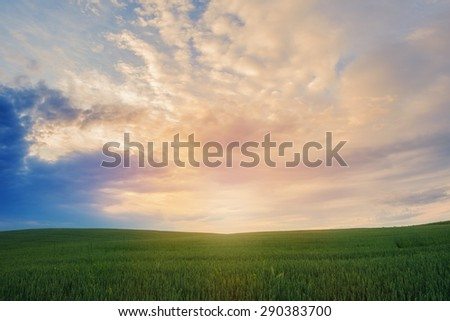 Landscape of green field over sunset