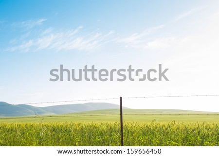Landscape of green field with view on hills
