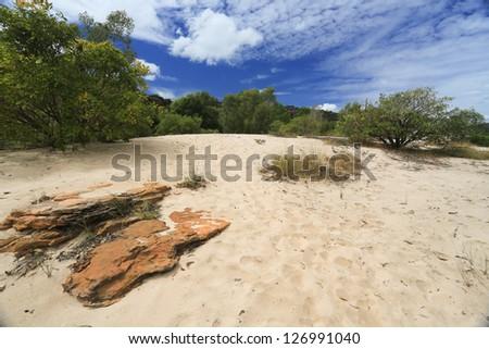 Landscape of Kakadu - stock photo
