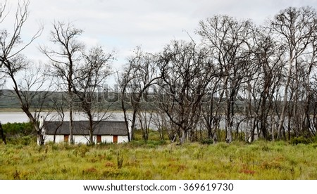 Landscape of little Farm house under dead trees