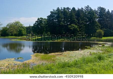 landscape of marshes lake and woodlands at arboretum in lisle illinois - stock photo