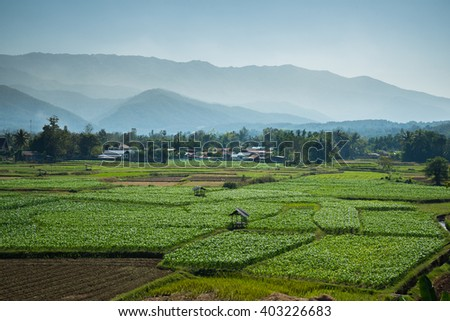 Landscape of mountain and farm ,View point of Phuket temple ,Pua district ,Nan province ,Thailand