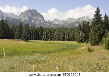 Landscape of Mountain Durmitor in Montenegro
