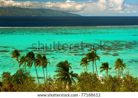 Landscape of paradise island Moorea, French Polynesia - stock photo