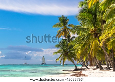 Landscape of paradise tropical island beach with perfect sunny sky. - stock photo