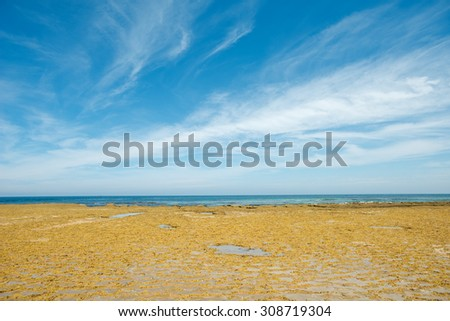 Landscape of Point Lonsdale in  Victoria, Australia.  - stock photo