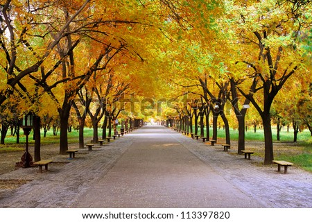 Landscape of quiet path in park with nobody in autumn - stock photo