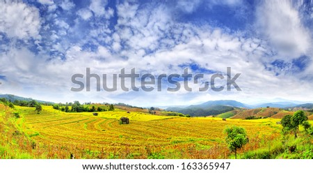Landscape of rice fields in the north of Thailand with beautiful sky