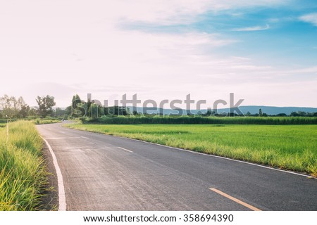 landscape of road and green paddy rice field at Late afternoon  - stock photo