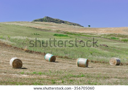 Landscape of Sicily with Many Hay Bales - stock photo