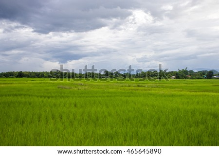 landscape of summer mountains and green field and blue sky. Rice fields in Thailand And mountain backdrop.