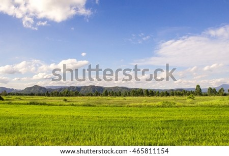 landscape of summer mountains and green grass and blue sky. Rice fields in Thailand And mountain backdrop.