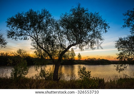 landscape of sunset with cloudy orange sky and a silhouette of tree - stock photo