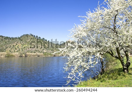Landscape of Tejo river, Belver, Portugal - stock photo
