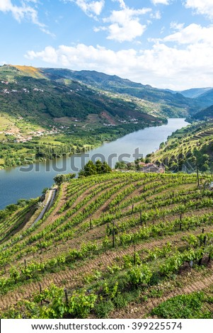 Landscape of the Douro river regionin Portugal -  Vineyards - stock photo