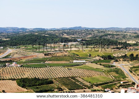 Landscape of the interior of Portugal with several vineyards and olive tree plantations - stock photo