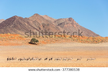 Landscape of the Namib Rand Mountains in Nambia - stock photo