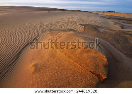 Landscape of the Silver Lake Sand Dunes, Silver Lake State Park, Michigan, USA