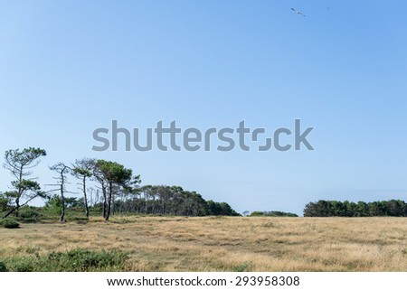 landscape of the wild coast of a brittany island