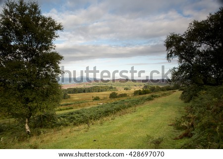 Landscape of the Yorkshire dales national park photographed in the early morning, cloudy blue sky and a panorama of grassy fields, flanked by oak trees on either side. - stock photo