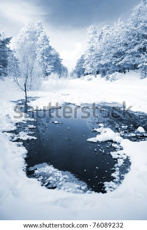 landscape of trees covered with snow - stock photo