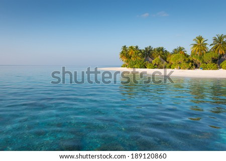 Landscape of tropical beach with palm trees - stock photo