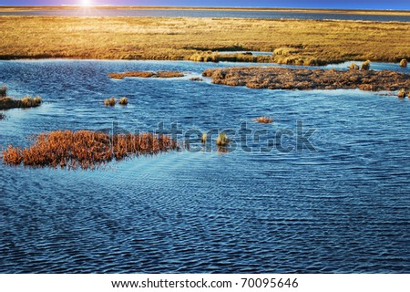 Landscape of tundra on sunset - stock photo