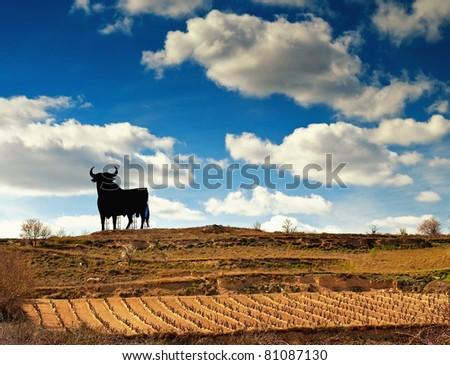 Landscape of vineyard in Spain - stock photo